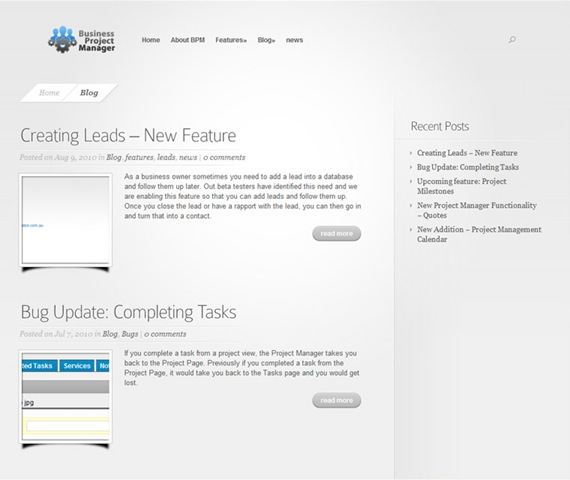 Business Project Manager WordPress Website