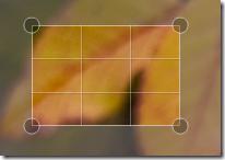 picnik - crop image